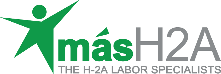MAS Labor H2A, LLC logo